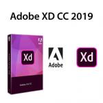 Download Adobe XD CC 2019 Full Google drive – Video hướng dẫn cài đặt