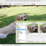 Download IrfanView Mới Nhất – Phần mềm xem quản lý ảnh chuyên nghiệp
