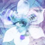 Download Blue Iris 5.3.7 Full – Video hướng dẫn cài đặt