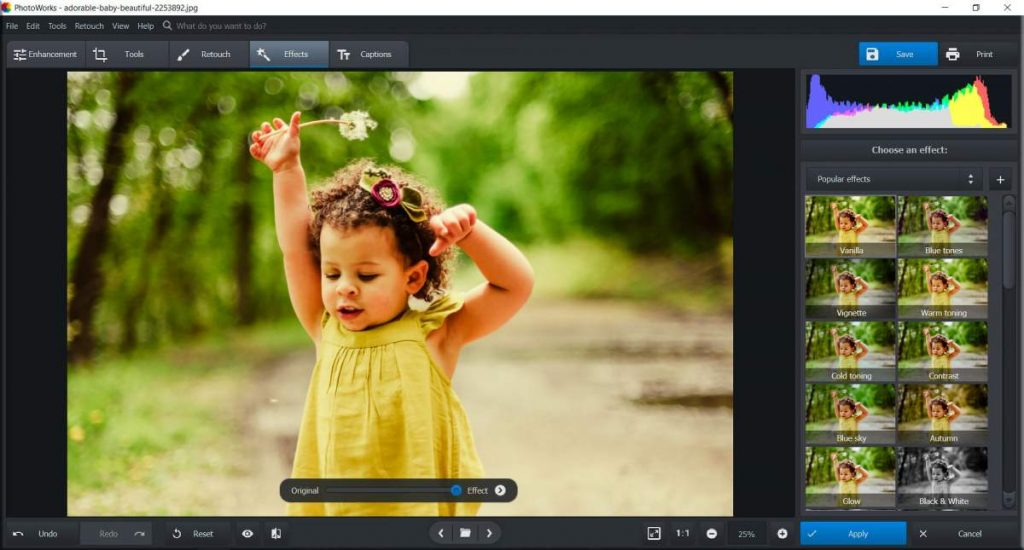 Download AMS Software PhotoWorks Free Download