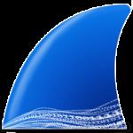 Download Wireshark 3.4.3 Win/Mac – Giám sát phân tích mạng