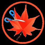 Download Easy Cut Studio 5.013 Full – Thiết Kế Đồ Hoạ Logo
