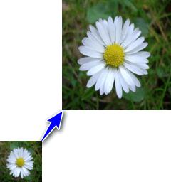 Top phần mềm phóng to ảnh tốt nhất không bị vỡ hình