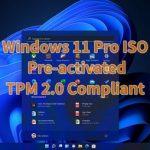 Download Windows 11 Pro ISO Pre-activated TPM 2.0 Compliant – Tải windows 11 đã kích hoạt sẵn