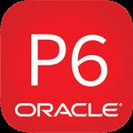 Download Primavera P6 v20 – Phần mềm quản lý dự án